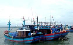 Cập nhật nóng về bảo hộ tàu cá Việt Nam