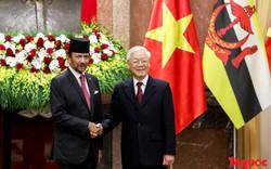 Tổng Bí thư, Chủ tịch nước Nguyễn Phú Trọng chủ trì Lễ đón chính thức Quốc vương Brunei thăm cấp Nhà nước tới Việt Nam