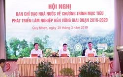 Phó Thủ tướng Trịnh Đình Dũng: Tiếp tục duy trì ổn định  việc làm, tăng thu nhập cho người làm nghề rừng