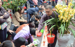 Xếp hàng chờ đến lượt để được dâng sao giải hạn tại chùa Diên Hựu