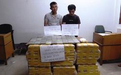 Bắt hai đối tượng vận chuyển 600.000 viên ma túy từ Lào về Việt Nam