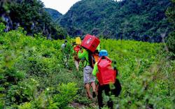 Quảng Bình nói không với các dự án đầu tư xây dựng tại vùng lõi vườn quốc gia Phong Nha – Kẻ Bàng