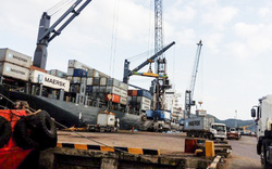 Bất ngờ Cảng Quy Nhơn hoãn Đại hội cổ đông