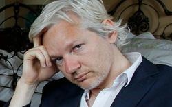 Nhà sáng lập WikiLeaks