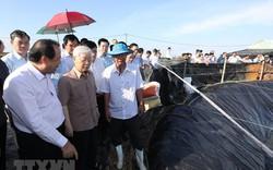 Hình ảnh Tổng Bí thư, Chủ tịch nước Nguyễn Phú Trọng tại Kiên Giang
