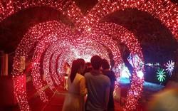 Thanh Hóa tổ chức Lễ hội ánh sáng tại thành phố biển Sầm Sơn