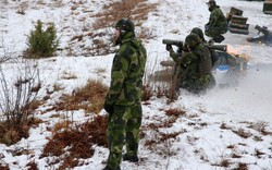 Sức ép Nga dâng cao, quân lực Thụy Điển