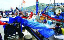 Thủ tướng quyết định sử dụng khoản tiền bồi thường của Formosa để đầu tư các dự án tại 4 tỉnh miền Trung
