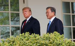Hối hả về hạt nhân Triều Tiên: Ông Trump thân chinh đến Hàn Quốc