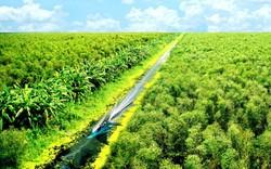 Cà Mau: Đẩy mạnh công tác hỗ trợ, phát triển du lịch