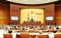 Hôm nay, Quốc hội dành cả ngày thảo luận về kinh tế - xã hội