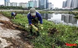 Hà Nội tăng cường công nhân dọn dẹp công viên 300 tỷ  đang bị ô nhiễm nặng