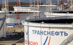 Đi ngược đường đồng minh năng lượng, Nga không thấy tác động của việc cắt giảm