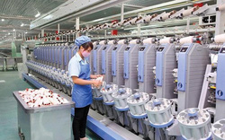 Các công ty của Trung Quốc cạnh tranh khốc liệt tại Việt Nam để sản xuất hàng hóa xuất khẩu sang Mỹ