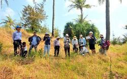 Cắm bảng chỉ dẫn 4 tuyến du lịch thuộc Công viên địa chất Lý Sơn- Sa Huỳnh