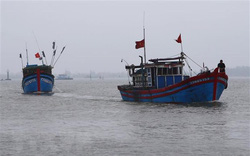 Việt Nam kiên quyết phản đối các tàu công vụ Trung Quốc xua đuổi, tịch thu tàu cá Việt Nam tại Hoàng Sa
