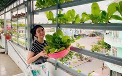 Vườn rau thủy canh ăn không xuể trên sân thượng nhà diễn viên Kha Ly - Thanh Duy