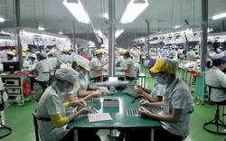 Đầu tư trực tiếp nước ngoài vào Việt Nam đang cao nhất trong nhiều năm trở lại đây
