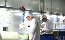 Liên doanh nhựa VinFast - An Phát chính thức hoạt động từ tháng 6