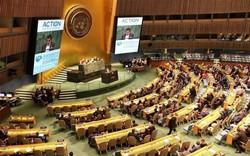 Việt Nam trúng cử ủy viên không thường trực Hội đồng Bảo an LHQ
