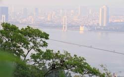 Giới thiệu du lịch Đà Nẵng tại Áo: Mời gọi các công ty lữ hành đưa du khách đến Việt Nam