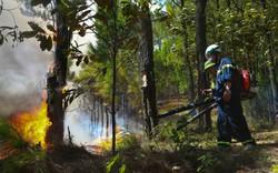 Vụ cháy rừng nghiêm trọng tại Hà Tĩnh: Đám cháy đã được khống chế hoàn toàn
