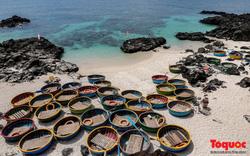 Lý Sơn thu phí tham quan đảo Lớn và đảo Bé với 100 nghìn đồng/người
