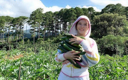 Nhìn vườn rau củ quả xanh ngút ngàn của Lý Nhã Kỳ khiến nhiều người thán phục