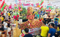Central Group Việt Nam quảng bá, tiêu thụ 500 tấn Thanh long Bình Thuận