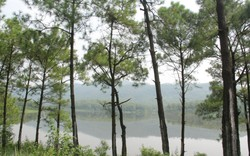 Hồ Yên Trung: Gặp Đà Lạt ngay giữa lòng Uông Bí