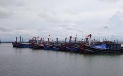 Bão số 4 tiếp tục mạnh lên, nhiều địa phương khẩn trương kêu gọi tàu thuyền vào bờ