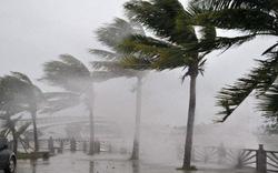 9 khuyến cáo của EVN để đảm bảo an toàn về điện trong  bão số 4