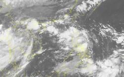 Ban Chỉ đạo Trung ương về Phòng chống thiên tai ra thông báo khẩn ứng phó với Áp thấp nhiệt đới gần biển Đông