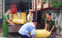 Phát hiện xe chở 1.610 kg quả Trám trắng nhập lậu từ Trung Quốc