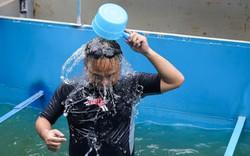 Người dân Thủ đô ngỡ ngàng chứng kiến chuyên gia Nhật Bản bơi lặn, tắm dưới sông Tô Lịch