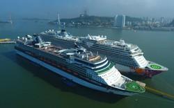 Cảng tàu khách quốc tế Hạ Long đón 42.000 lượt khách quốc tế đến với vịnh di sản trong 8 tháng