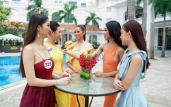 Dàn thí sinh nóng bỏng của Hoa hậu Hoàn vũ Việt Nam 2019 khoe sắc