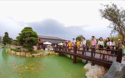 """Lộ diện những cái tên """"khủng"""" của Vbiz trên sân khấu vườn Nhật"""