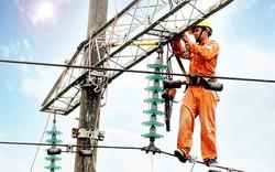 EVN thu về hơn 200 tỷ nhờ bán cổ phần tại Công ty Tài chính Cổ phần Điện lực