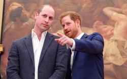 Bạn bè tiết lộ Hoàng tử Harry phẫn uất vì anh trai