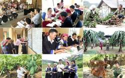 """Giảm nghèo và câu chuyện """"kỳ lạ"""" ở Việt Nam"""