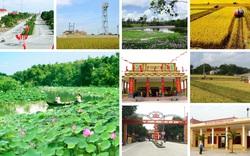 Nghiên cứu xây dựng Bộ tiêu chí quốc gia về nông thôn mới các cấp
