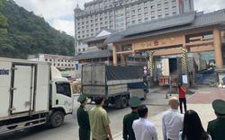 Virus corona hoành hành, cửa khẩu ở Lạng Sơn tạm dừng thông quan hàng hóa