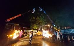EVNCPC: 100% khách hàng của 4 tỉnh, thành miền Trung – Tây Nguyên đã được cấp điện trở lại sau bão số 6