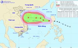 Bão số 8 di chuyển theo hướng Tây, cảnh báo nguy cơ sạt lở đất vùng núi từ Quảng Bình đến Quảng Ngãi