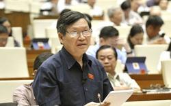 Đề nghị xử phạt hành vi xúc phạm Đảng kỳ