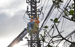 Nhanh chóng khắc phục, cấp điện trở lại tại các tỉnh miền Trung