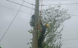 Ảnh hưởng của bão số 12: Hơn 251.000 khách hàng tại 3 tỉnh miền Trung mất điện