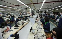 Tiền Giang nỗ lực khắc phục khó khăn, giải quyết việc làm cho hàng nghìn người lao động