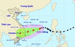 Bão số 10 mạnh cấp 8, giật cấp 10, dự báo đi vào đất liền các tỉnh Quảng Ngãi đến Khánh Hòa